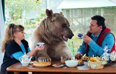 Casal russo adotou um lindo bebê urso