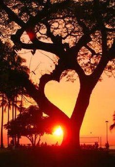 <3 Sunrise