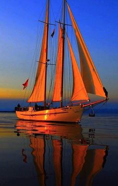 Sailing Yacht Charter - Search for Yachts and Catamarans Yacht Boat, Yacht Design, Sail Away, Am Meer, Wooden Boats, Tall Ships, Catamaran, Water Crafts, Belle Photo