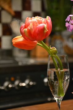 ranuncolo rosa # B&B Cà Bianca dell'Abbadessa # flut flower #