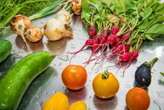 Twice a week we harvest our organic vegetables that our cooks transform into delicious dishes!