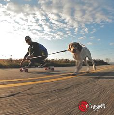 The Pintail 46 Longboard by Original Skateboards df1cf548794
