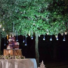 Allestimento wedding cake by night