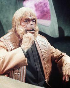 entertainment-2011-05-barrel-of-monkeys-monkey-dr-zaius.jpg (409×516)