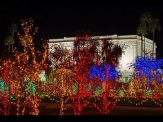 Christmas Lights on the Mesa Arizona Temple Grounds   The Church of Jesus Christ of Latter-day Saints