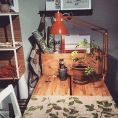 Gammal fin lampa blev Ny i ateljen. #erikshjälpen #secondhand #inspiration. Detta är ett inlägg från vårt Instagram.  . Erikshjälpen Second Hand Inspiration Inredning