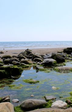 Rock pools on Pendine Sands beach, Carmarthen, Wales