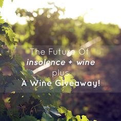 blog, blogger, community, wine, giveaway insolence + wine