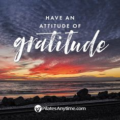 Join us for Unlimited access to streaming Pilates videos in your home and on the go. Pilates Quotes, Pilates Video, Thanksgiving, Inspirational Quotes, Fitness, Truths, Life Coach Quotes, Thanksgiving Tree, Inspiring Quotes