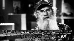 Si on bumblebees.
