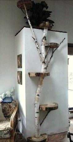 Cool Cat Houses For Cool Cats Diy Cat Houses Cat House Diy Diy Cat Tree Cat Room