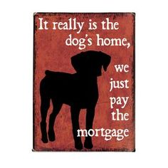 It really is the dog's home...