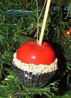 Candy Apple Ornament. These were fun to make also. A simple plastic apple from a dollar store, dipped in glue, and then in bird seed, and glued into a silver candy paper. The stick is a cut piece from a wooden skewer and pressed down into the plastic apple.