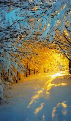 Winters best