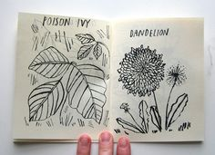 Common Garden Weeds zine