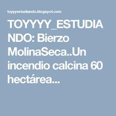 TOYYYY_ESTUDIANDO: Bierzo MolinaSeca..Un incendio calcina 60 hectárea...