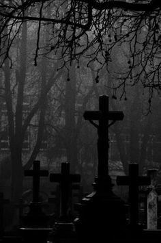 the remembrance is a cemetery, where more crosses stand as flowers. Gothic Aesthetic, Witch Aesthetic, Dark Gothic, Gothic Art, Dark Fantasy Art, Dark Art, Images Terrifiantes, Old Cemeteries, Graveyards