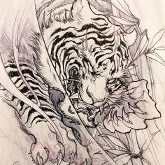 #chronicink #asiantattoo #asianink #irezumi #tattoo #tiger #illustration #sketch #drawing