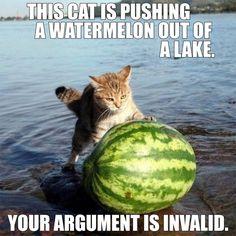 Argumentative Writing
