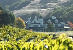 George Lucas' Skywalker Ranch in Cali - wish I could get an invite!