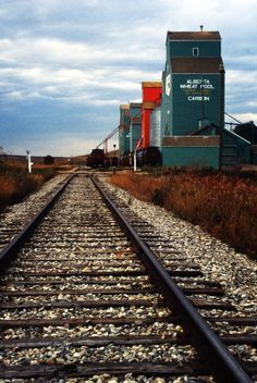 It's the fall of 1992 and I'm exploring the area northeast of Calgary in search of grain elevators and other interesting bits to photograph. Alberta Travel, Canadian History, City Landscape, Train Tracks, Old Buildings, Abandoned Houses, Model Trains, The Great Outdoors, Railroad Tracks