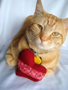 Kitty with red heart catnip toy by BaxCatandCo