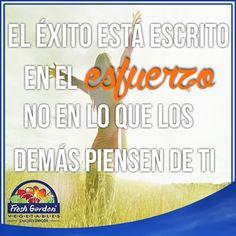 """""""El éxito está escrito en esfuerzo, no en lo que los demás piensen de ti"""" #FraseDelDía #Motivación"""