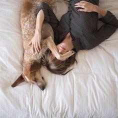 Cómo trabajar de #cuidador de #perros y no morir en el intento www.hostaldog.com @HostalDog