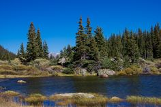 Meanderthals | Fall Creek Trail to Lake Constantine, Holy Cross Wilderness