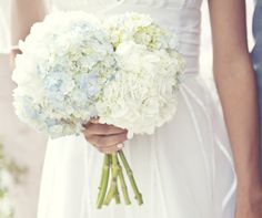 White and light blue bridal bouquet, wedding flowers - hortensia. I like the idea of those. But for an August wedding, it might be too late.
