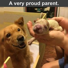 A very proud parent