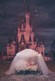 Cinderella's Arrival!   Photo by Rachel Gray      # Newborn Photography  # Disney princess photography  # Cinderella's Castle Princess Cinderella newborn photography Carriage castle