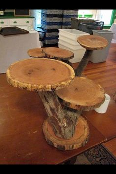 Nature. Display table