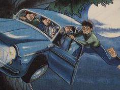 Harry Potter Standard flannel pillowcase