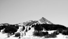 Looking up at Crested Butte Mountain Resort Ski Area. #skiing #snowboarding