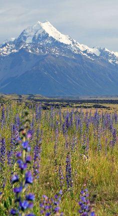 Mount Cook / Aoraki National Park | New Zealand. Find more venue ideas at southernbride.co.nz
