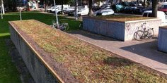Surinameplein | Green Roof on Bicycle Shed