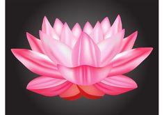 Lotus Vector - https://www.welovesolo.com/lotus-vector-2/?utm_source=PN&utm_medium=wcandy918%40gmail.com&utm_campaign=SNAP%2Bfrom%2BWeLoveSoLo