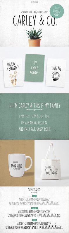 Skinny Font family Carley & Co. by Skyla Design on @creativemarket