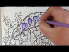 Daydreams dagdrommar coloring book - coloring flowers - prismacolor pencils…