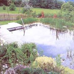 Learn how to build a natural swimming pool in order to create a cooling summer retreat for your homestead. They do not require harmful chemicals, are fairly low-tech, and once established call for little management. Includes information on pool zoning, natural filtration, sealing the pool, choosing plants for your pool area, algae control and maintenance.