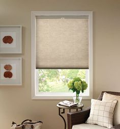Good Housekeeping Cellular Shade Shown In Muslin Shades Blinds Lounge Curtains Honeycomb