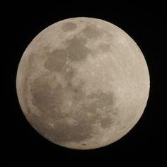 Incredible shot of the moon over Small Hope! #andros #bahamas #fullmoon #beautiful