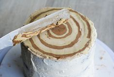Birch Stump Cake-16