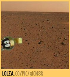 They found this on Mars!