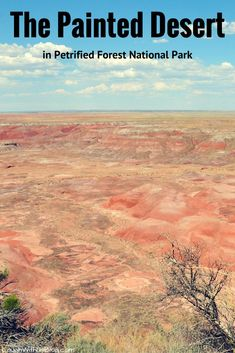 So much more to see in Petrified Forest National Park in Arizona than petrified wood. The Painted Desert is breathtaking!
