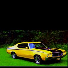 Buick skylark 70's