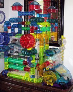 extreme modular plastic hamster habitat                                                                                                                                                                                 More
