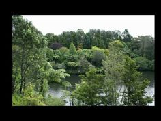 New Plymouth Taranaki Pukekura Park - YouTube