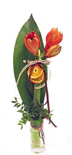 holmsunds blommor: Apelsinamaryllis